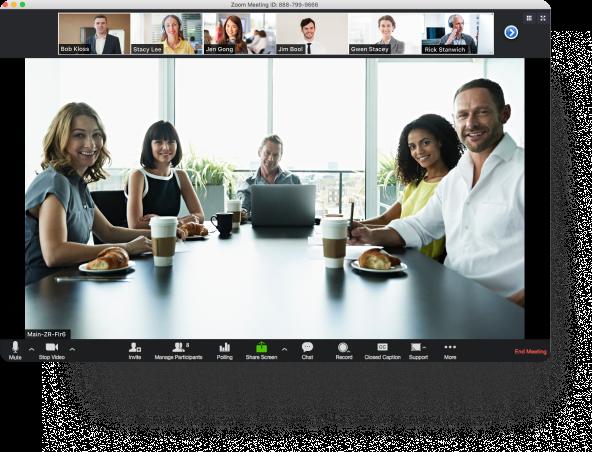 Zoom webmeeting video